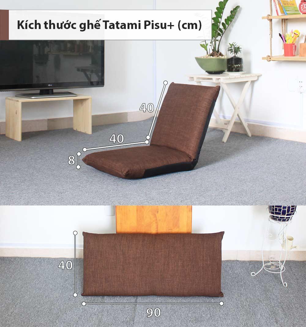 Thông số kích thước ghế Pisu Plus